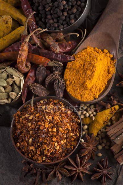 Spezie indiane in cucchiaio di legno e ciotole — Foto stock