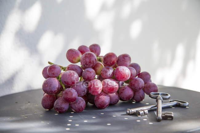 Frischen Haufen von roten Trauben — Stockfoto
