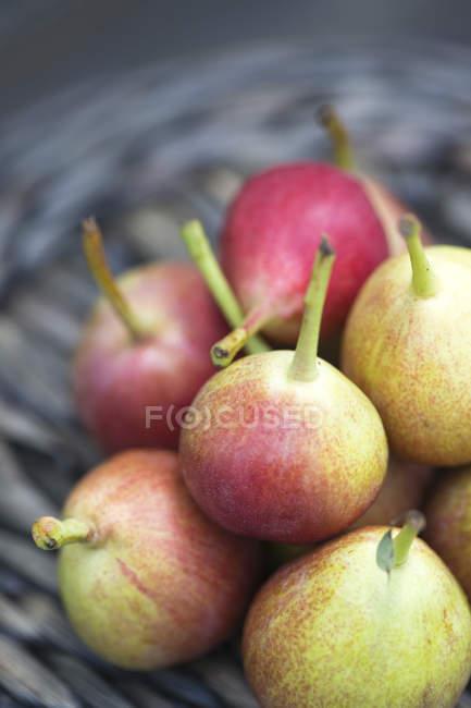 Peras frescas colhidas — Fotografia de Stock