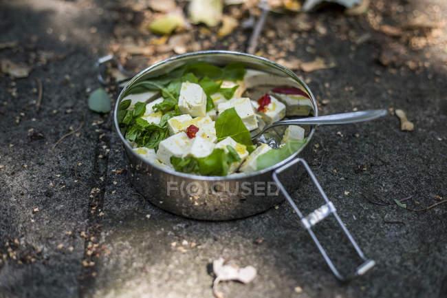Tofu marinato con erbe fresche — Foto stock