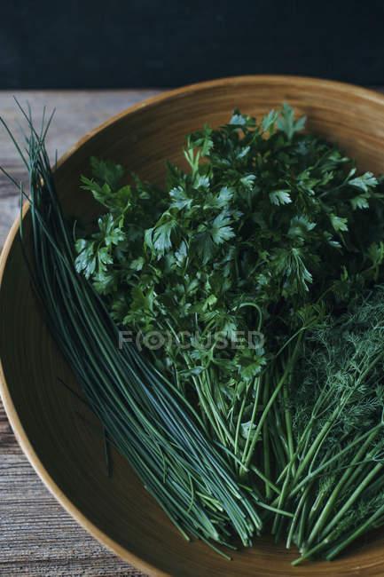 Grüne Kräuter in Schüssel — Stockfoto