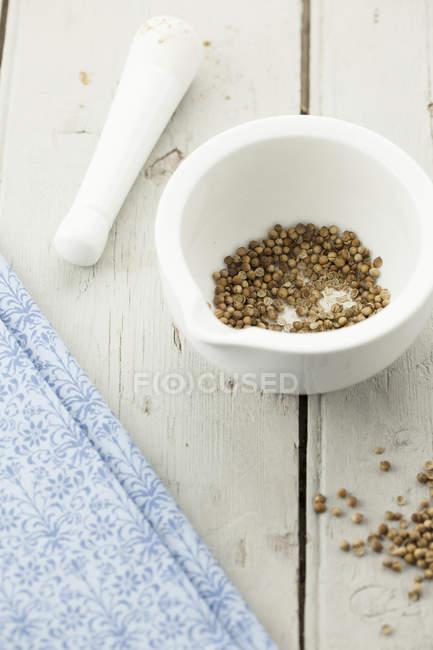 Коріандр насіння в маточкою і будівельний розчин — стокове фото