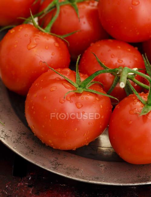 Виноградної стиглих помідорів митий — стокове фото