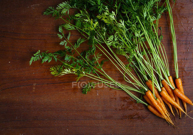 Farm fresh Baby Carrots — Stock Photo