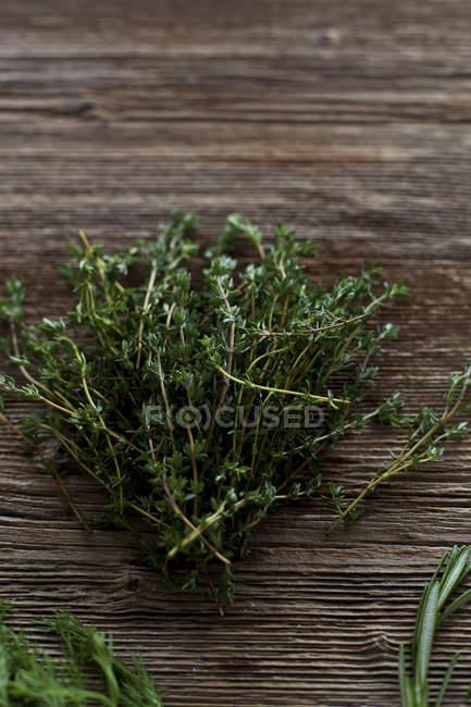 Tomillo fresco verde - foto de stock