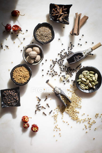 Spices and seeds in bowls — Stock Photo