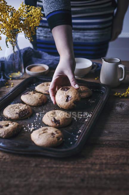 Жінка, приймаючи шоколадні печива — стокове фото