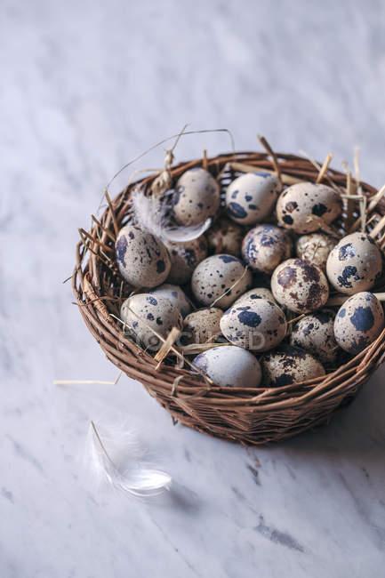 Ovos de codorna em cesta — Fotografia de Stock