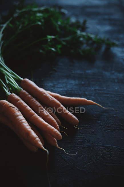 Zanahorias frescas con tallos - foto de stock