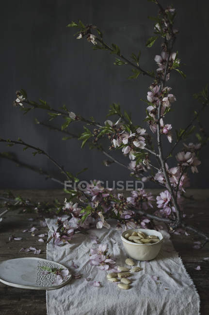 White almonds and blossom — Stock Photo