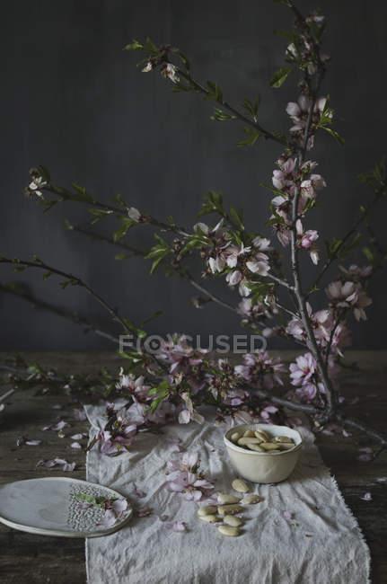 Fleur et amandes blancs — Photo de stock