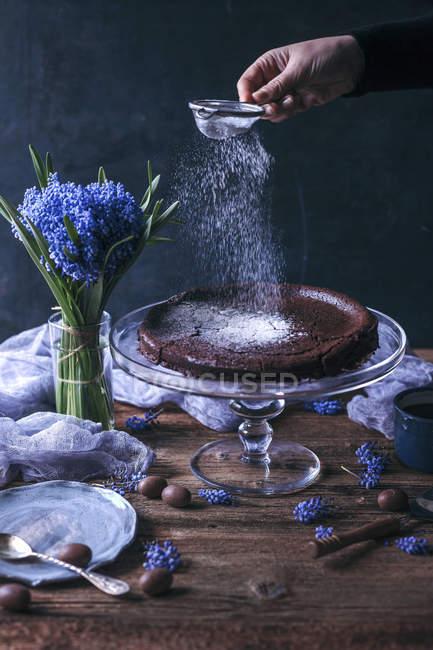 Шведский шоколадный торт — стоковое фото