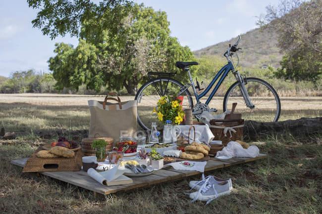 Велосипед і свіжі продукти — стокове фото