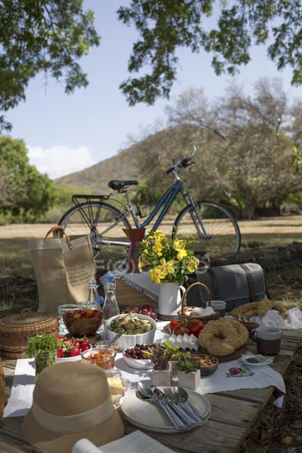 Fahrrad und frische Lebensmittel — Stockfoto