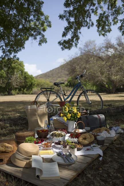 Bicicleta e alimentos frescos — Fotografia de Stock