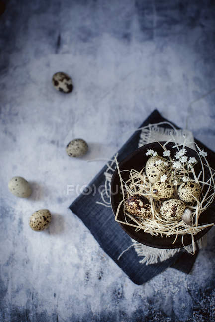 Fresh organic quail eggs — Stock Photo