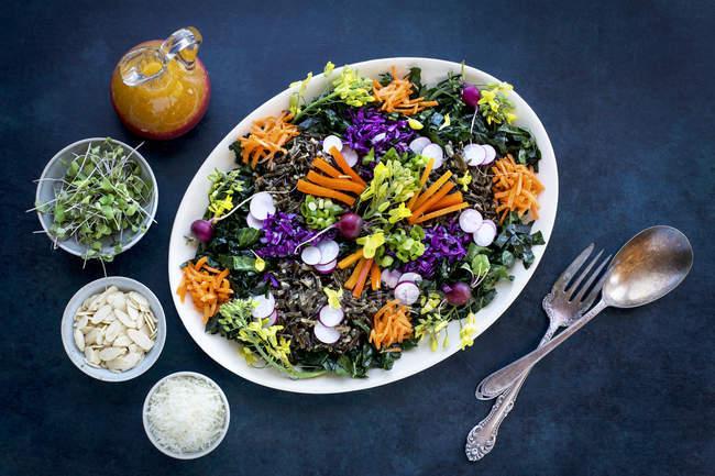 Salada de arroz selvagem de couve — Fotografia de Stock