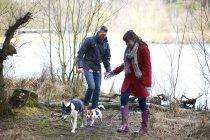 Coppia a piedi due cani nel bosco — Foto stock