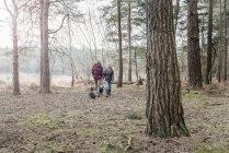 Casal sênior curtindo andar com cães — Fotografia de Stock