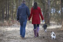 Couple walk two dogs in woods — Stock Photo