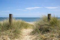 Прекрасні піщані дюни і ландшафт пляж — стокове фото