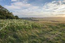 Під час заходу сонця краєвид над прокатки сільській місцевості — стокове фото