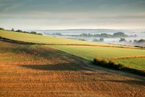 Landscape over agricultural fields — Stock Photo
