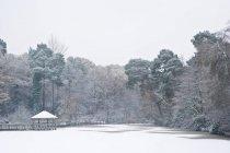 Заморожені зими озеро вкрите снігом — стокове фото