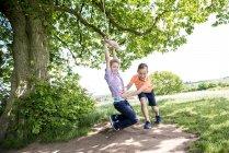Мальчики играют на качелях в сельской местности — стоковое фото