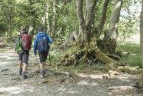 Boys in hiking clothing walking on shore — Stock Photo