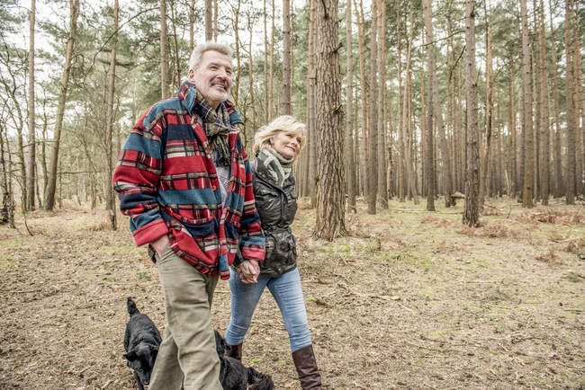 Senior couple enjoying walk with dogs — Stock Photo