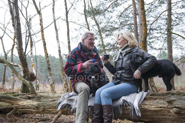 Paar genießt Bruch mit Hunde — Stockfoto
