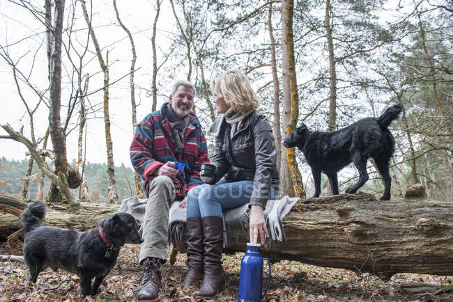 Couple enjoying break with dogs — Stock Photo