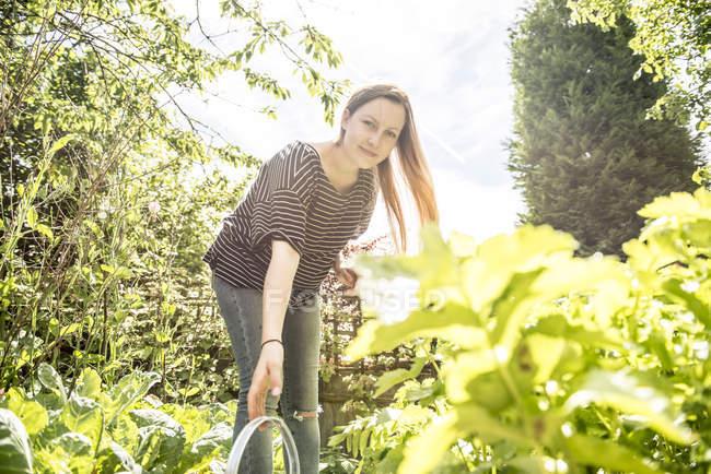 Садовник, работающий на участке — стоковое фото