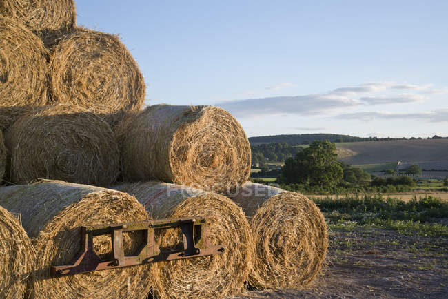 Landscape of hay bales and fields — Stock Photo