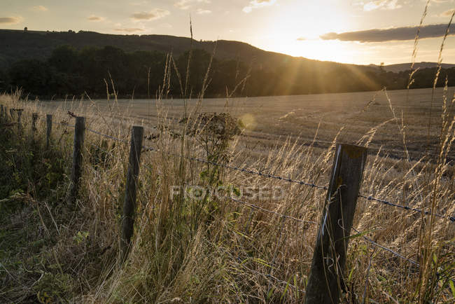 Солнце светит и назад освещения сельской местности — стоковое фото