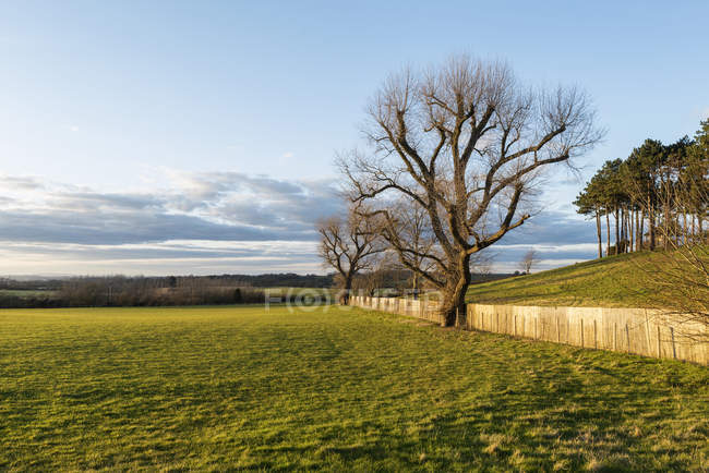Spring countryside landscape — Stock Photo