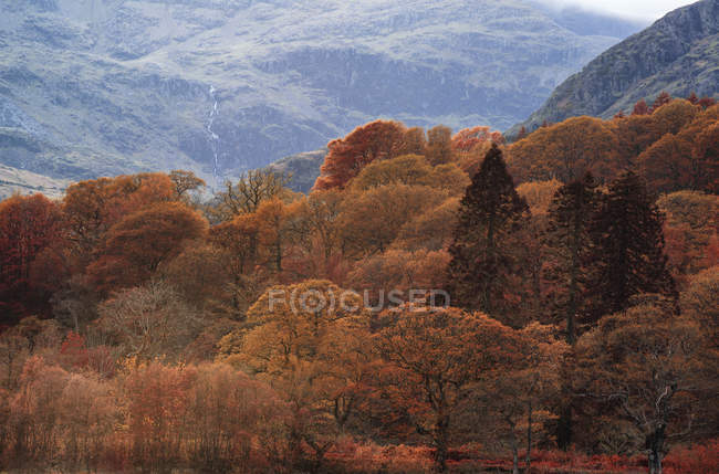 Colour landscape of Lake District in England — Stock Photo