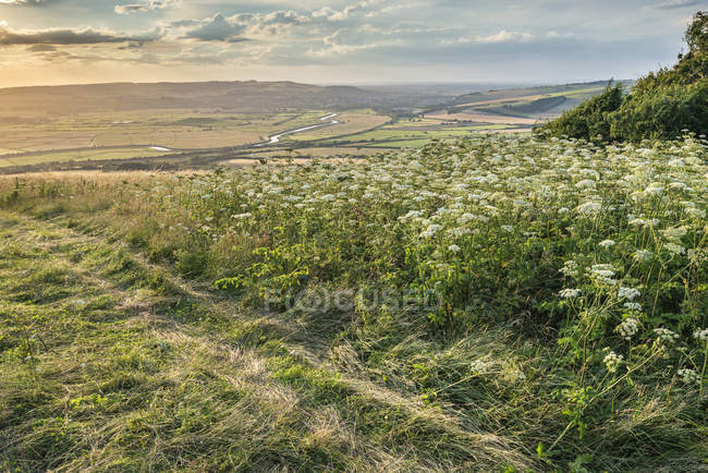 Tramonto paesaggio su campagna ondulata — Foto stock