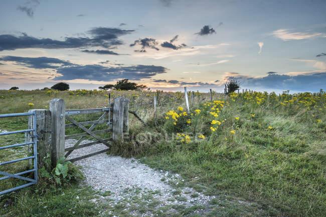 Закат пейзаж над катящейся сельской местностью — стоковое фото