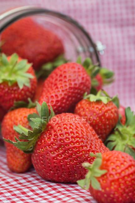 Fresas maduras verano - foto de stock