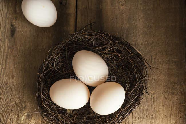 Frische Enteneiern im nest — Stockfoto
