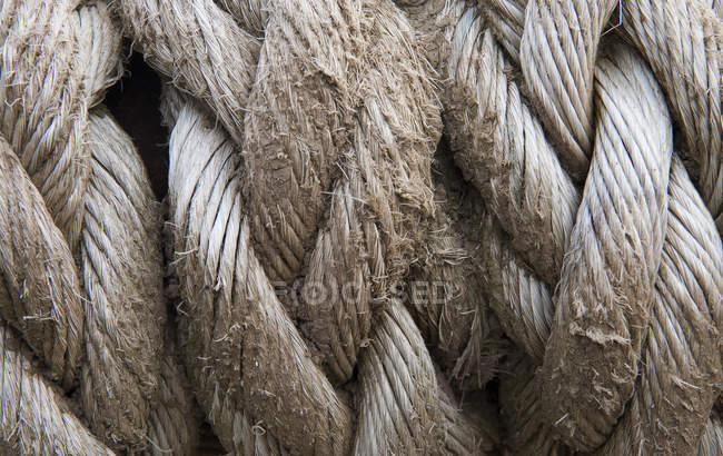 Old grunge rope — Stock Photo