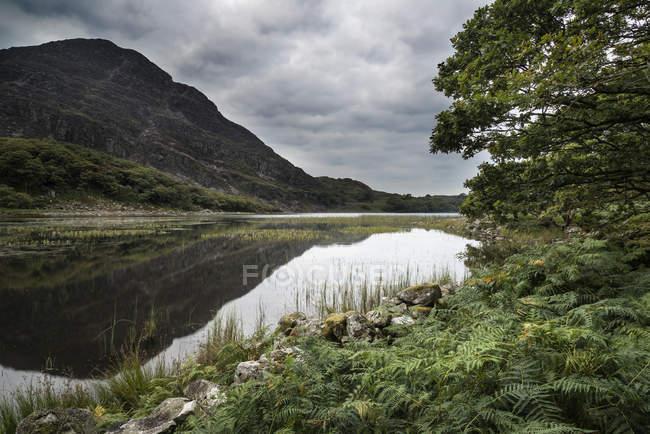 Montaña reflejada en el lago tranquilo - foto de stock