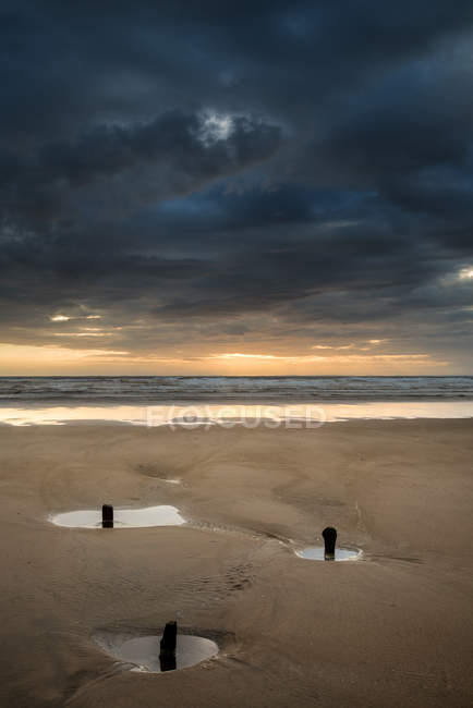 Old groynes protruding from sand — Stock Photo