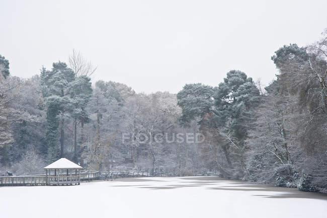 Lago congelado invierno cubierto de nieve - foto de stock