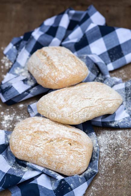 Panini italiano rollos - foto de stock