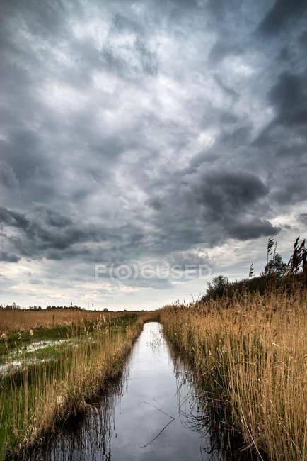 Dark dramatic landscape — Stock Photo