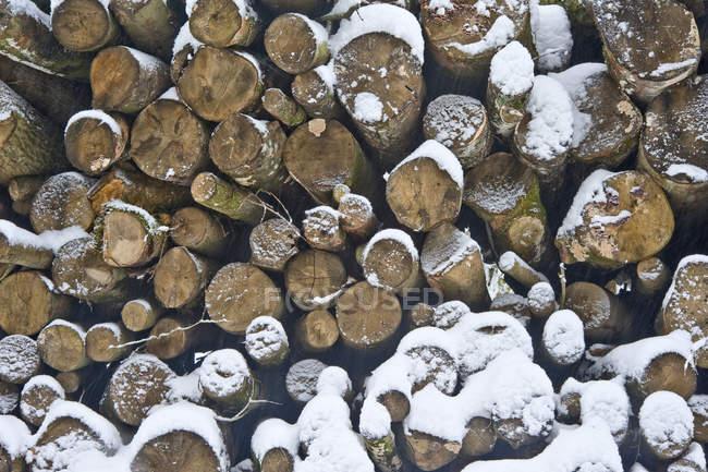 Сложены дрова журналы — стоковое фото