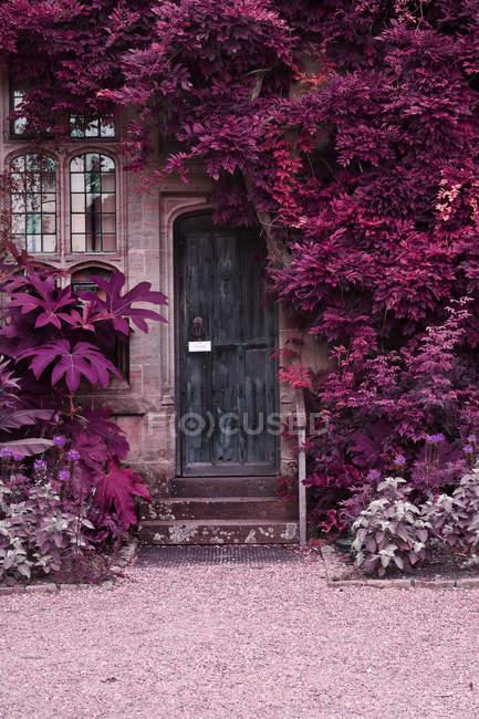 Old wooden door of stone brick house — Stock Photo